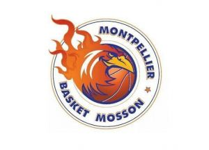 Basket Mosson